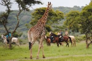 10 Days uganda safar